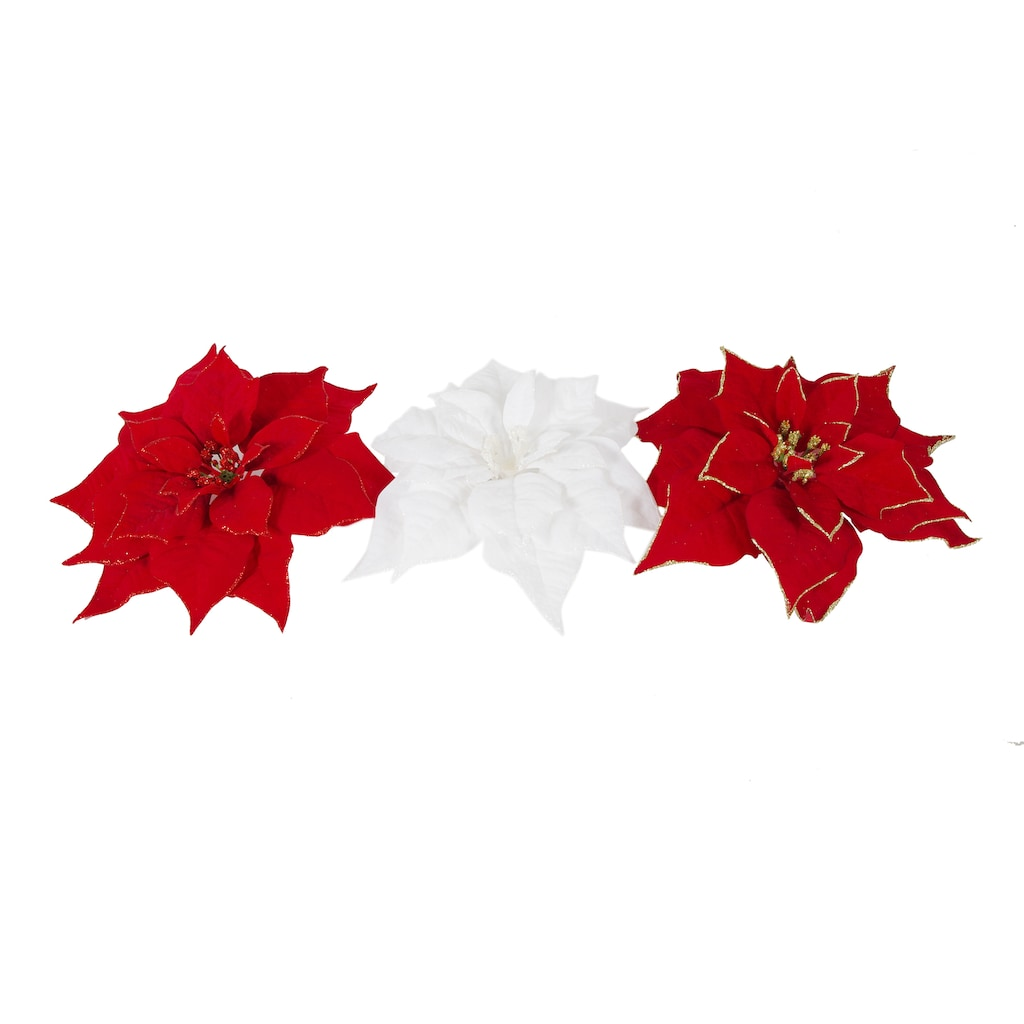 Poinsettias clipart accent. Free poinsettia download clip