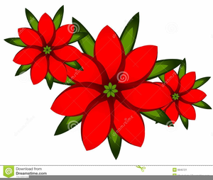 Free images at clker. Poinsettia clipart animated