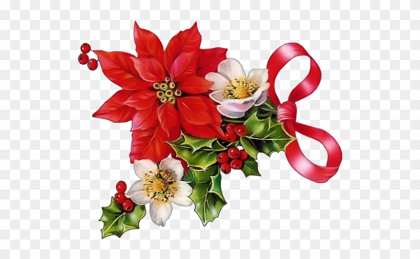 Poinsettia clipart beautiful. Christmas