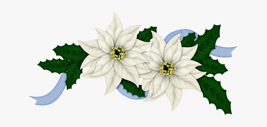 Flowers of christmas in. Poinsettias clipart blue