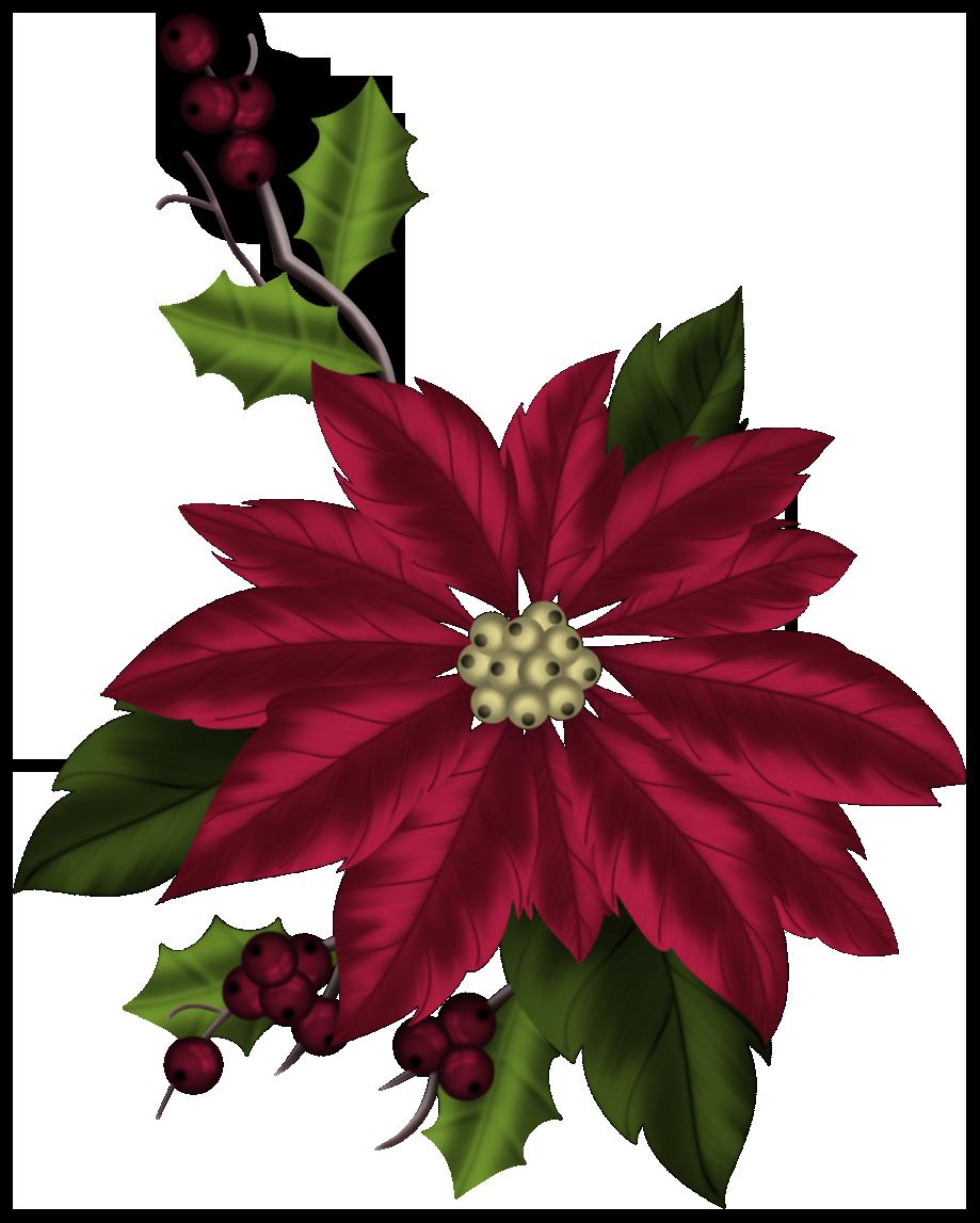Poinsettia clipart december flower. Epworth united methodist church