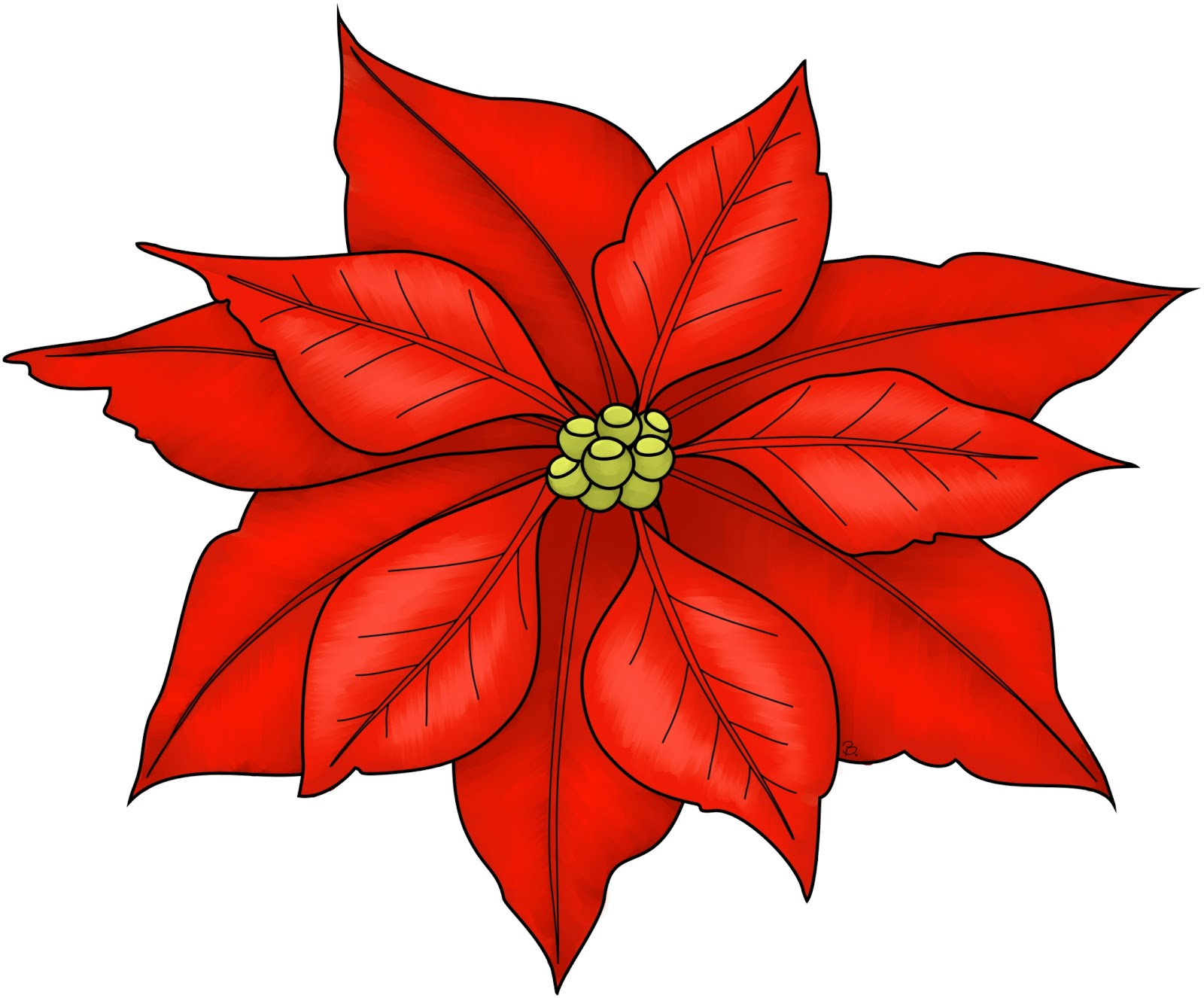 Free pictures download clip. Poinsettia clipart december flower
