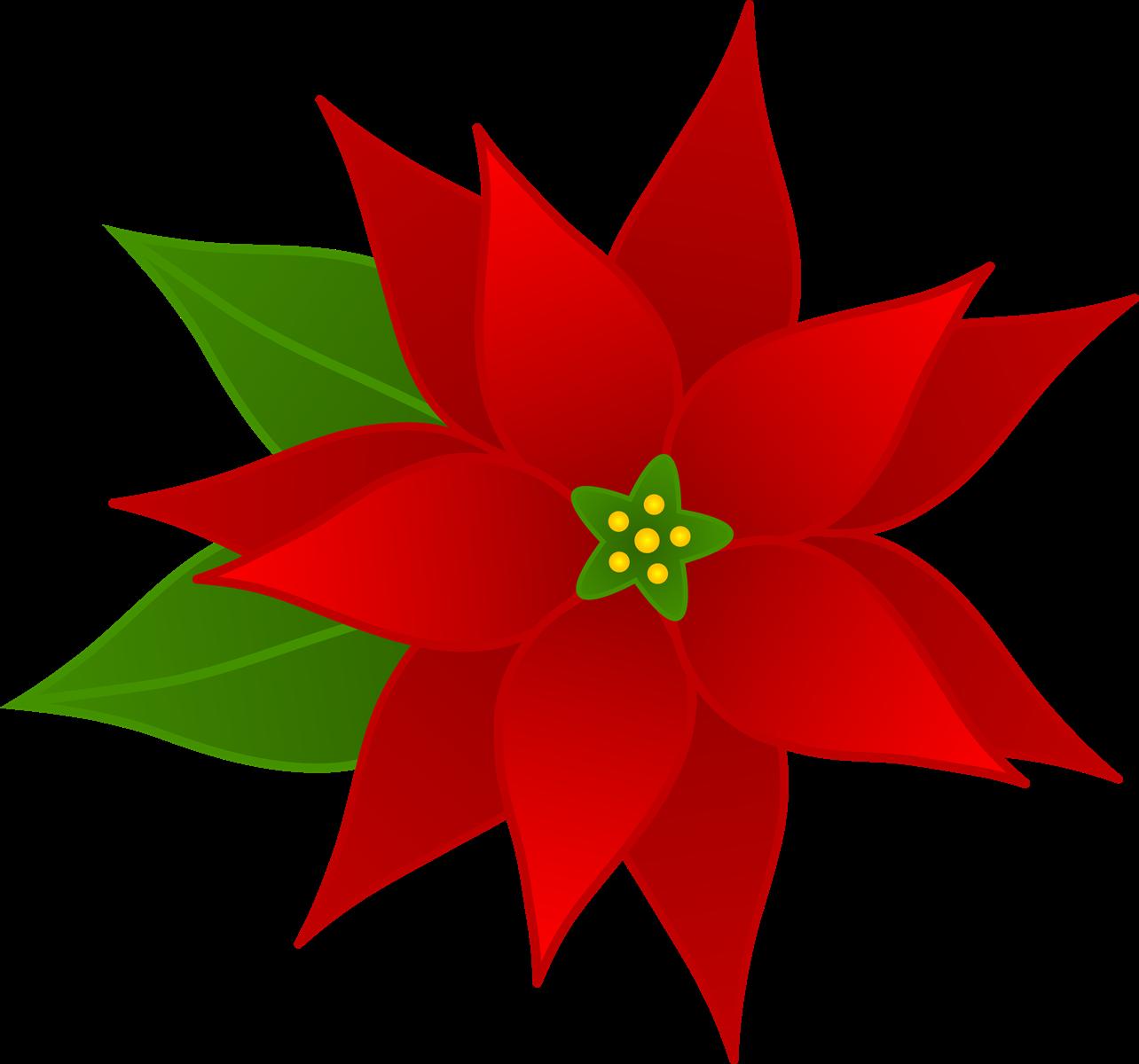 Flowers clip art many. Poinsettia clipart design