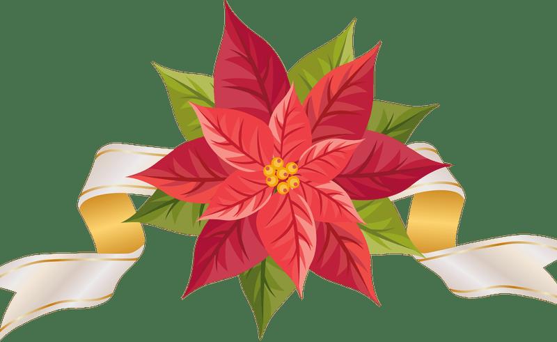 Poinsettias clipart holiday. Christmas poinsettia group flower