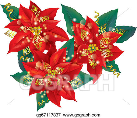 Poinsettias clipart gold. Vector stock christmas poinsettia