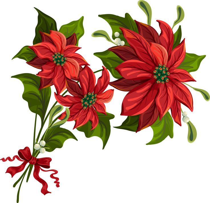 Free poinsettia art download. Poinsettias clipart holiday
