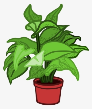 Poinsettia clipart potted plant. Png transparent image free