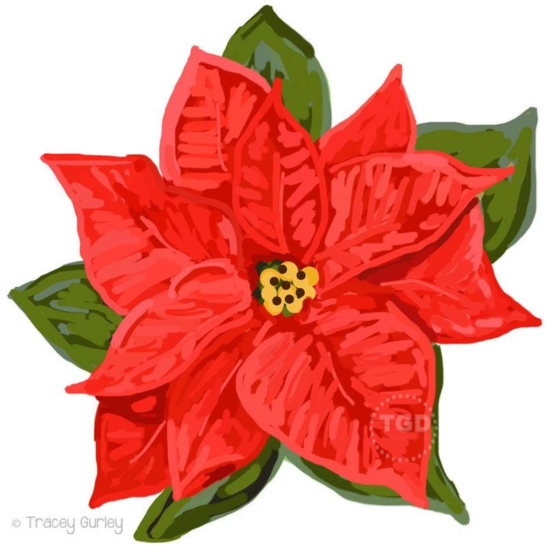 Red poinsettia holiday christmas. Poinsettias clipart clip art