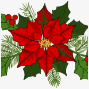 Poinsettias clipart swag. Holiday garland graphic