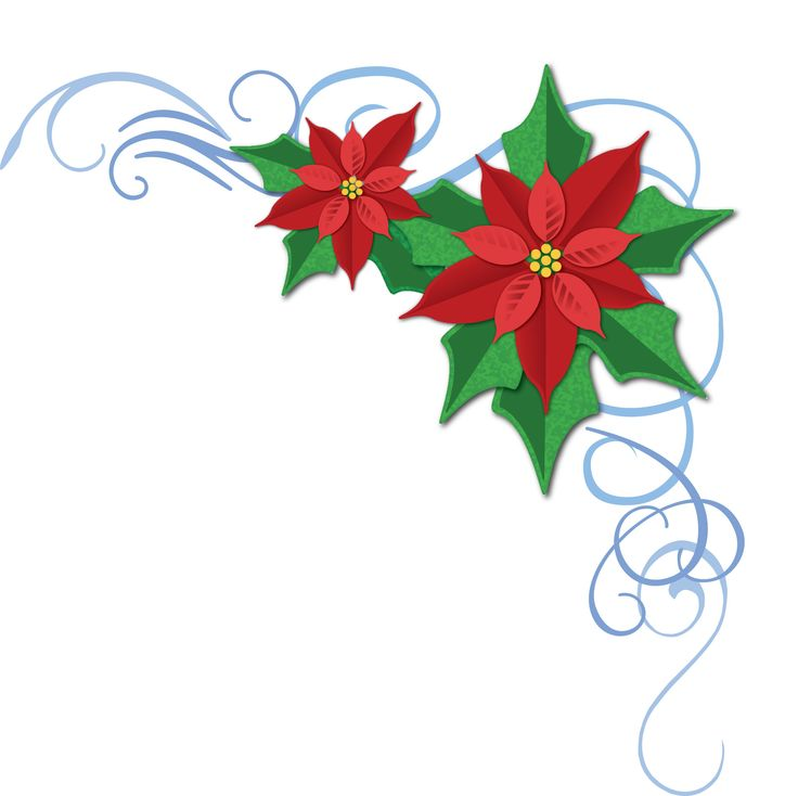 Poinsettia clipart symbol. Free christmas download clip