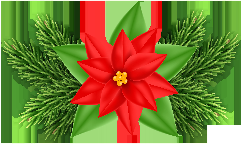 Poinsettias clipart. Christmas poinsettia deco png