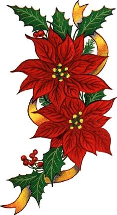 Drawing a poinsettia added. Poinsettias clipart