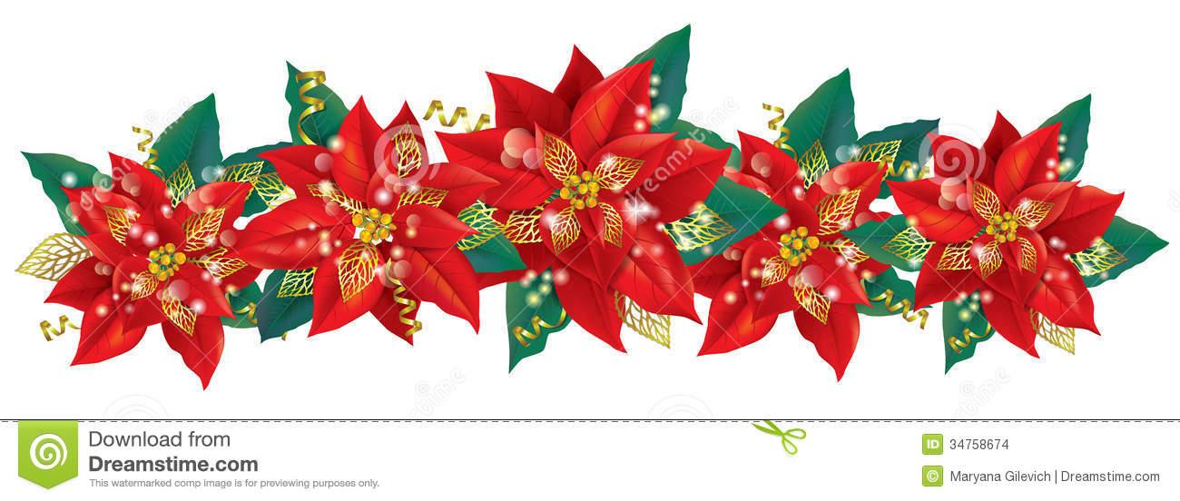 Poinsettia banner acur lunamedia. Poinsettias clipart
