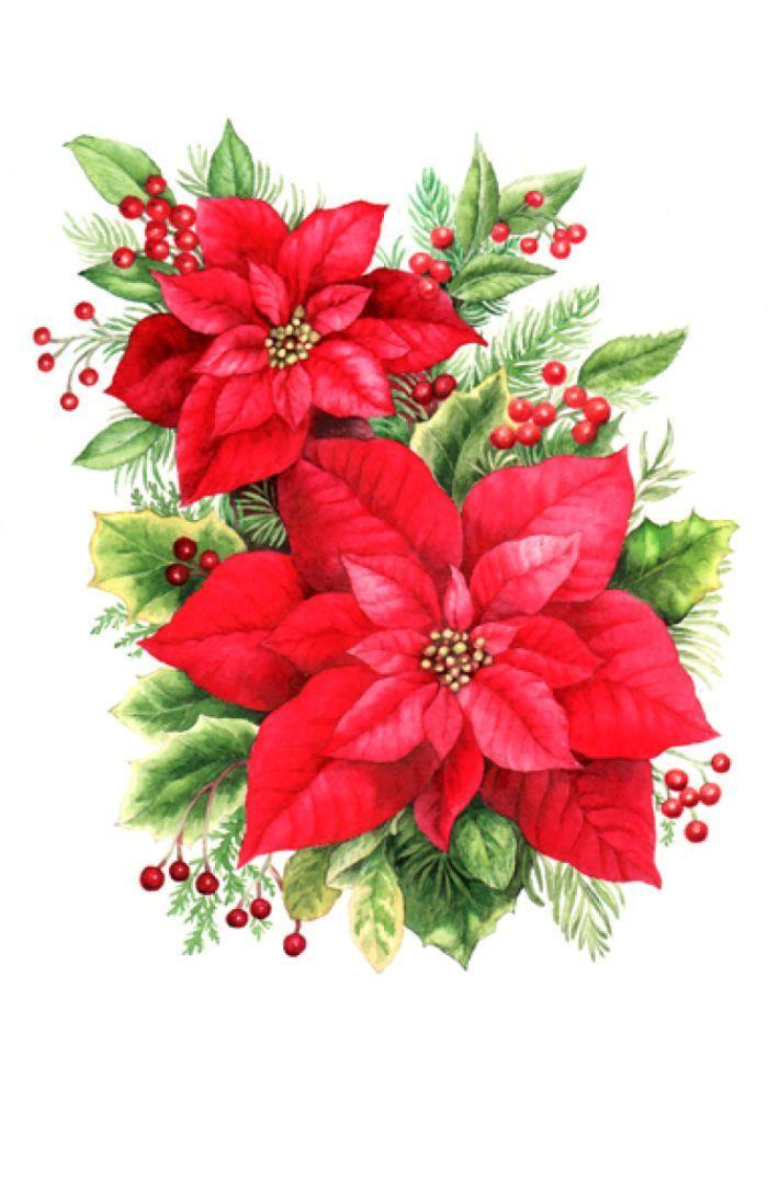 Clip art big x. Poinsettias clipart poinsettia wreath