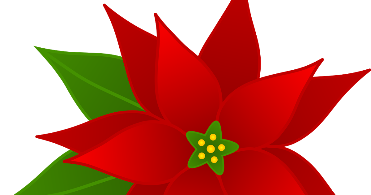 Flowers clip art many. Poinsettia clipart symbol