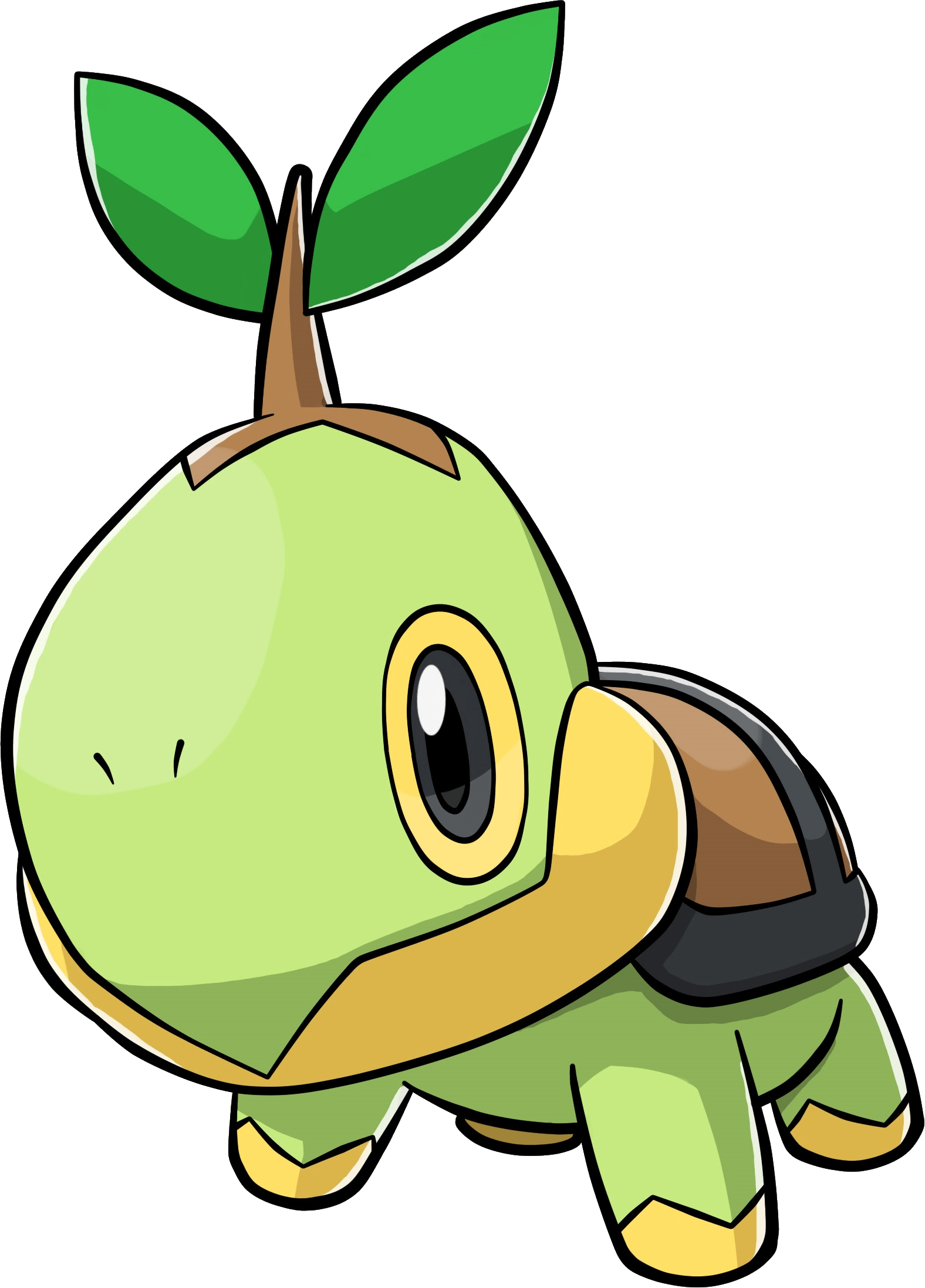 Turtwig transparent png stickpng. Pokemon clipart sticker