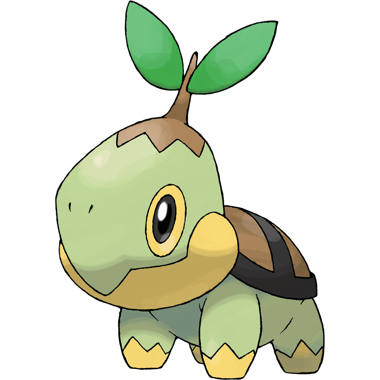 Pokemon clipart turtle.  turtwig rate that