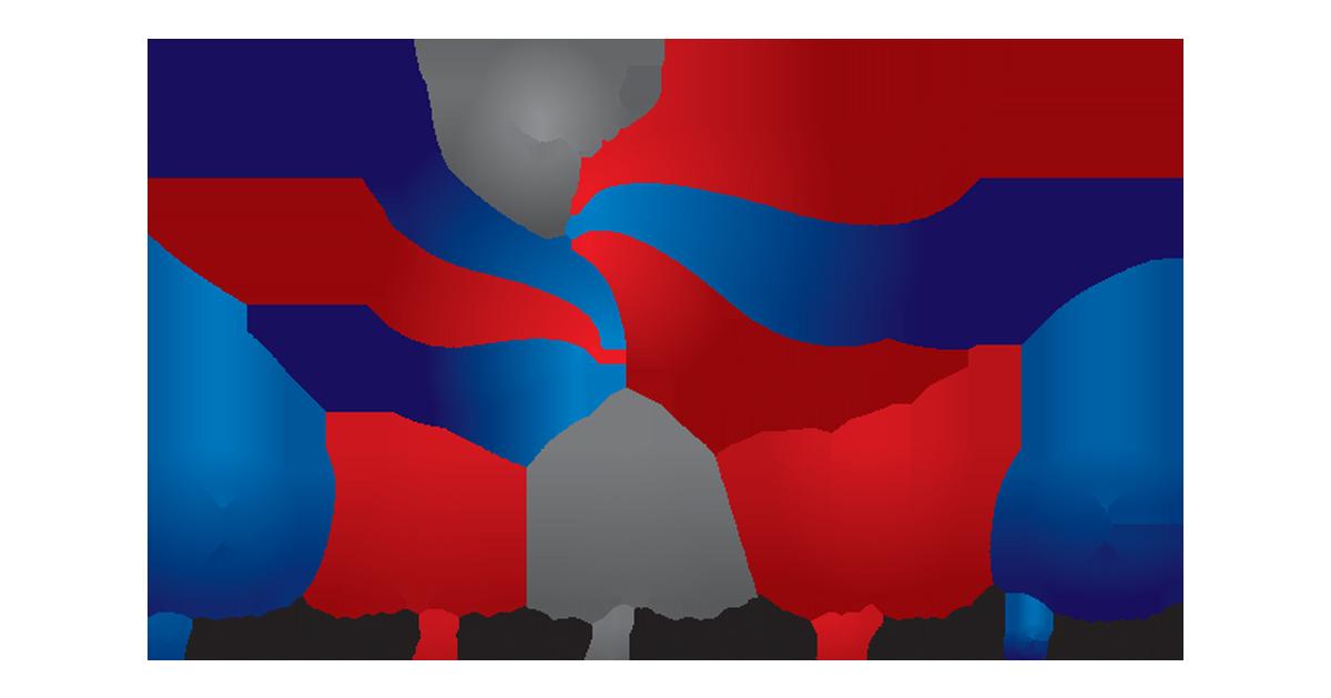 Democratic african american women. Politics clipart party caucus