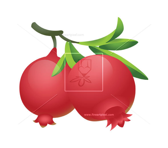 Pomegranate clipart. Fruit free vectors illustrations