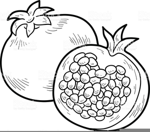 Pomegranates free images at. Pomegranate clipart