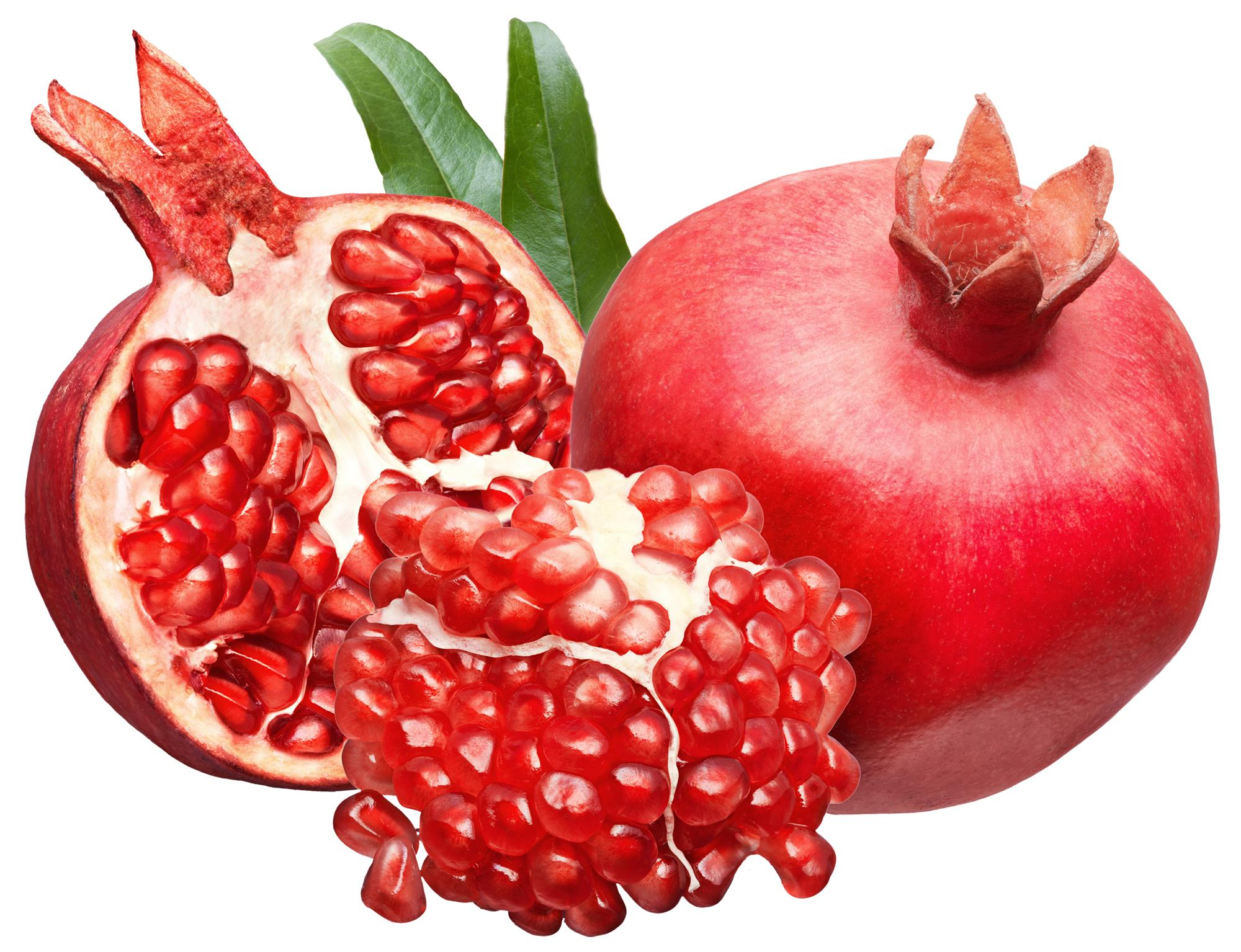 Free cliparts download clip. Clipart fruit pomegranate