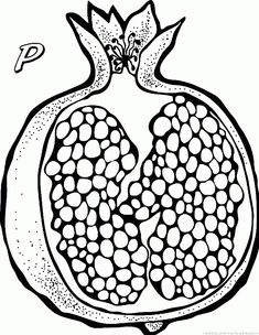 best drawing images. Pomegranate clipart anaar