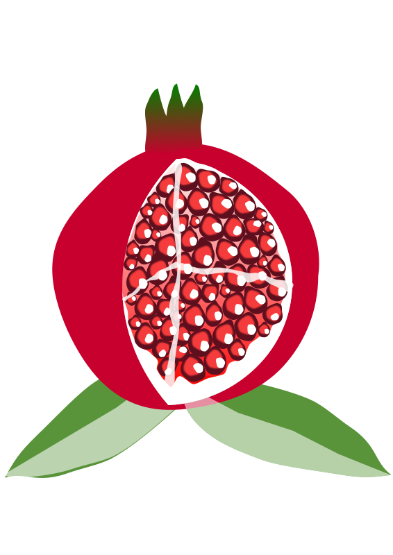 Download wallpaper full wallpapers. Pomegranate clipart anar