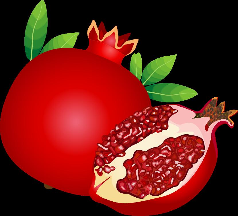 Play y rh rimon. Pomegranate clipart berry