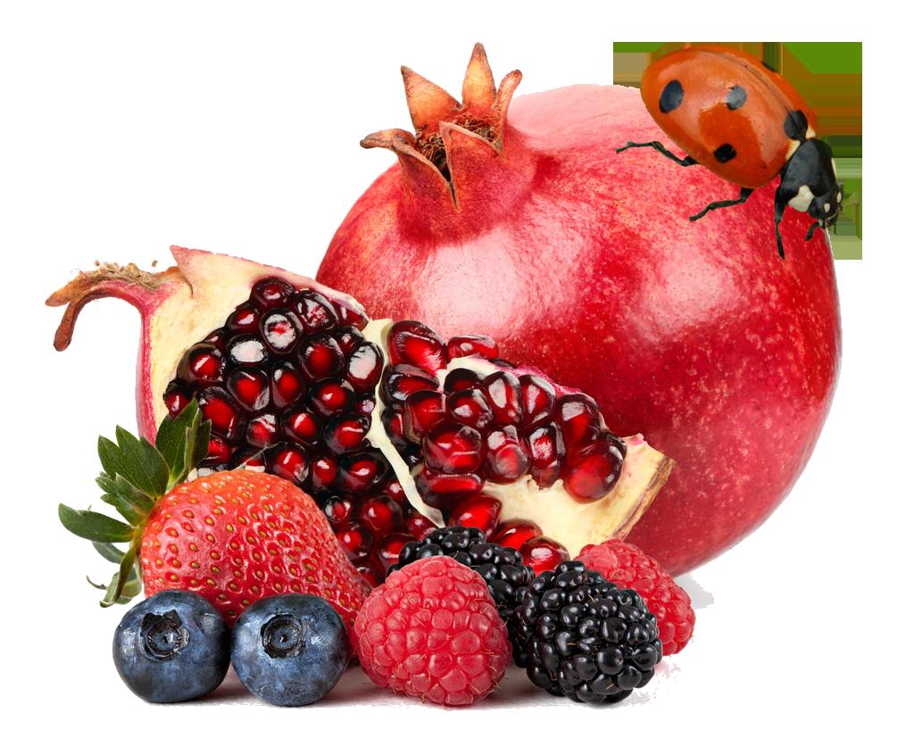 Berries e liquid bang. Pomegranate clipart berry