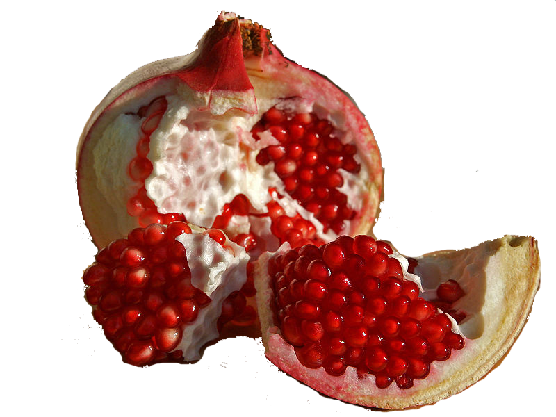 Pomegranate clipart berry. Png image purepng free