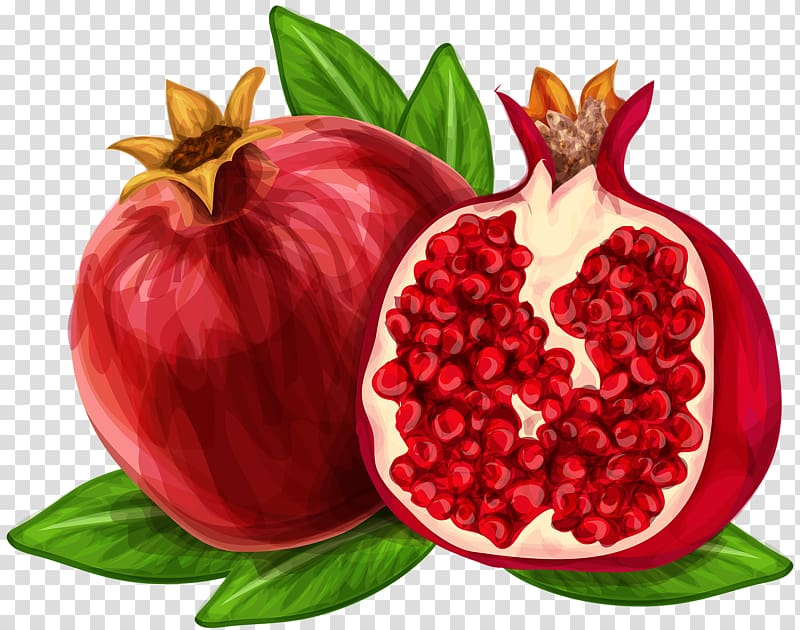 Juice hand painted watercolor. Pomegranate clipart berry