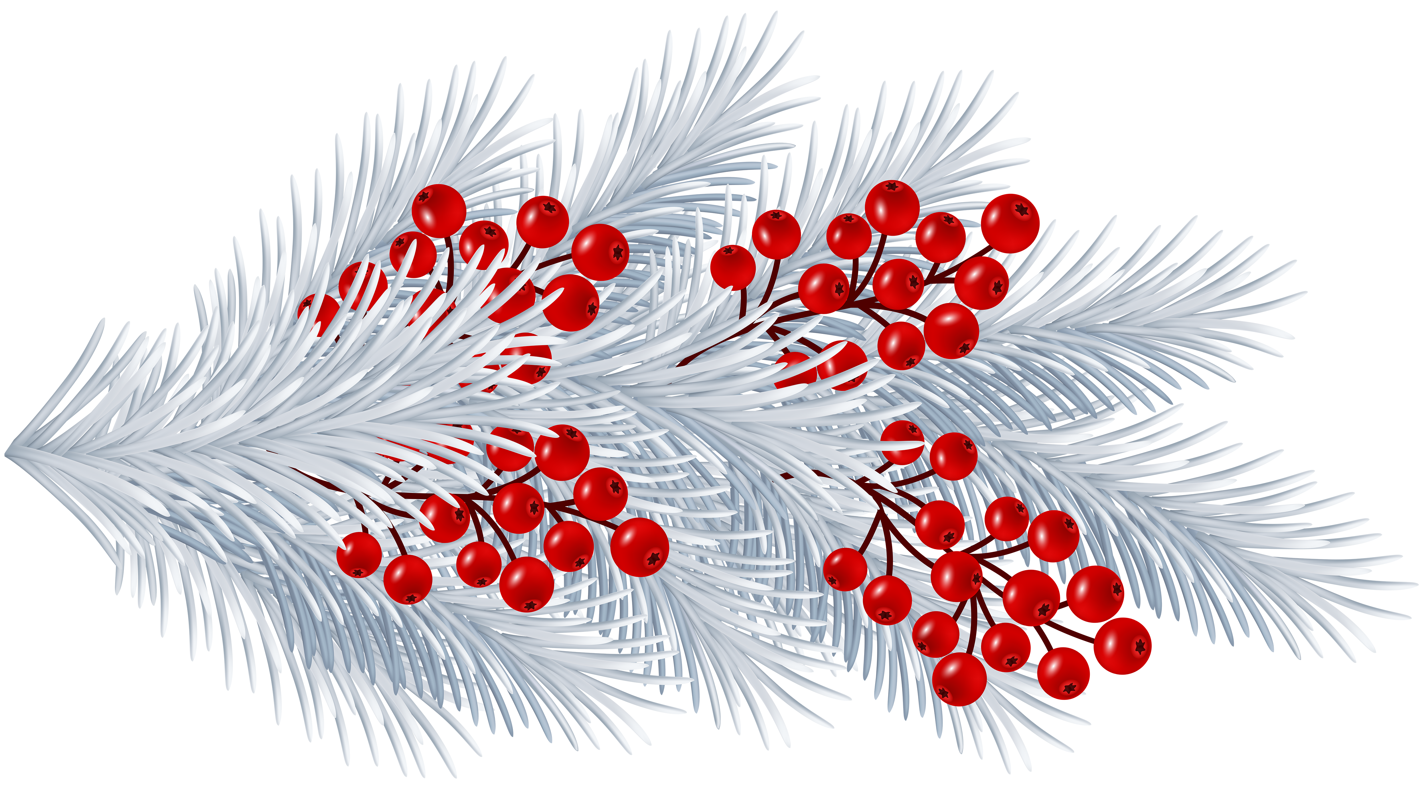 Pomegranate clipart branch. Christmas white transparent png
