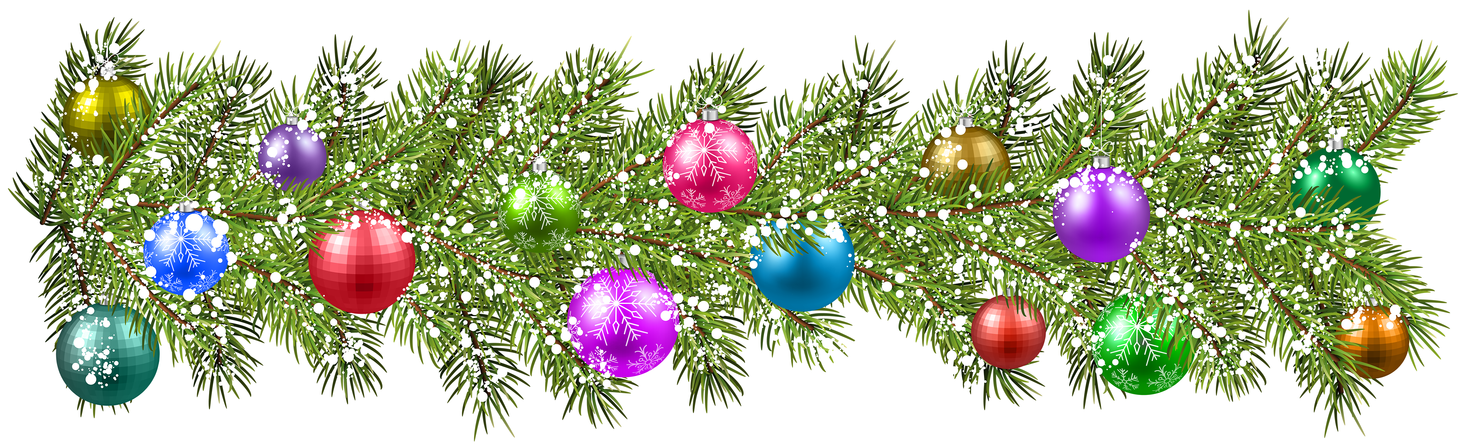 Christmas pine branches and. Pomegranate clipart branch