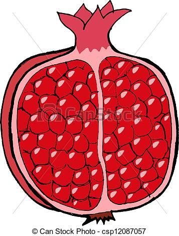 Vector stock illustration royalty. Pomegranate clipart clip art