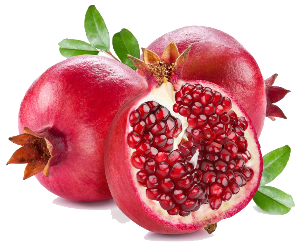 Tahira bhatt thanks for. Pomegranate clipart drawing