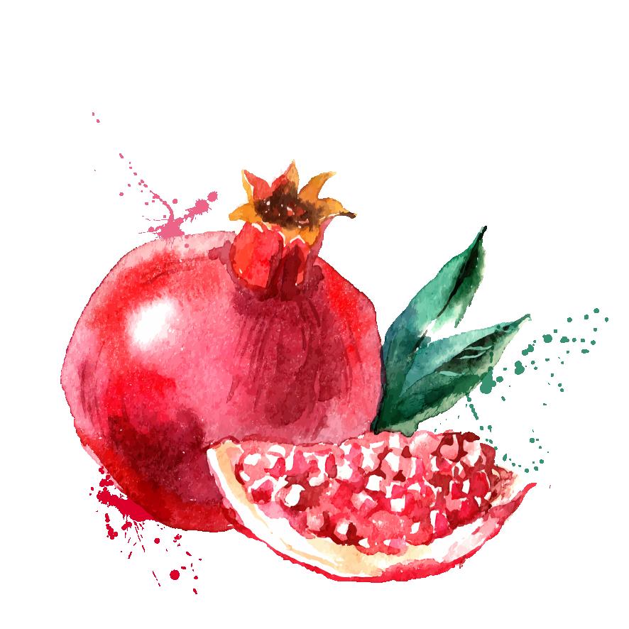 Pomegranate clipart drawing. Juice clip art transprent
