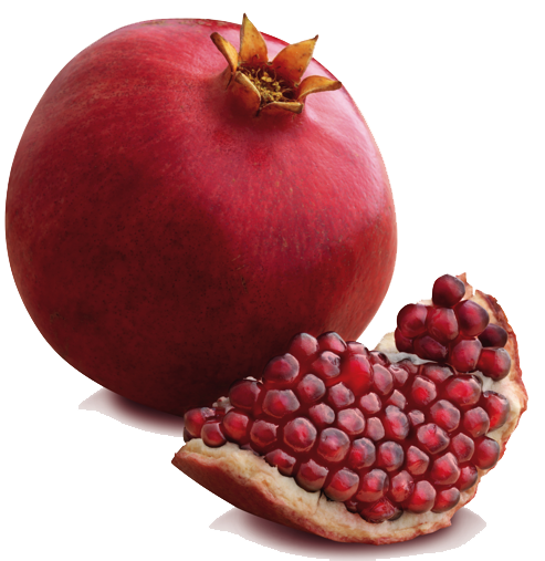 Pomegranate clipart file. Png all