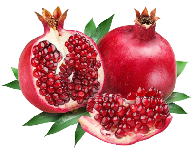 Pomegranate clipart file. Download free png dlpng