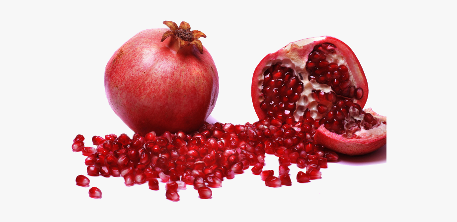 Pomegranate clipart file. Saveh cliparts
