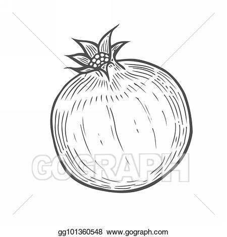 Pomegranate clipart healthy fruit. Stock illustration