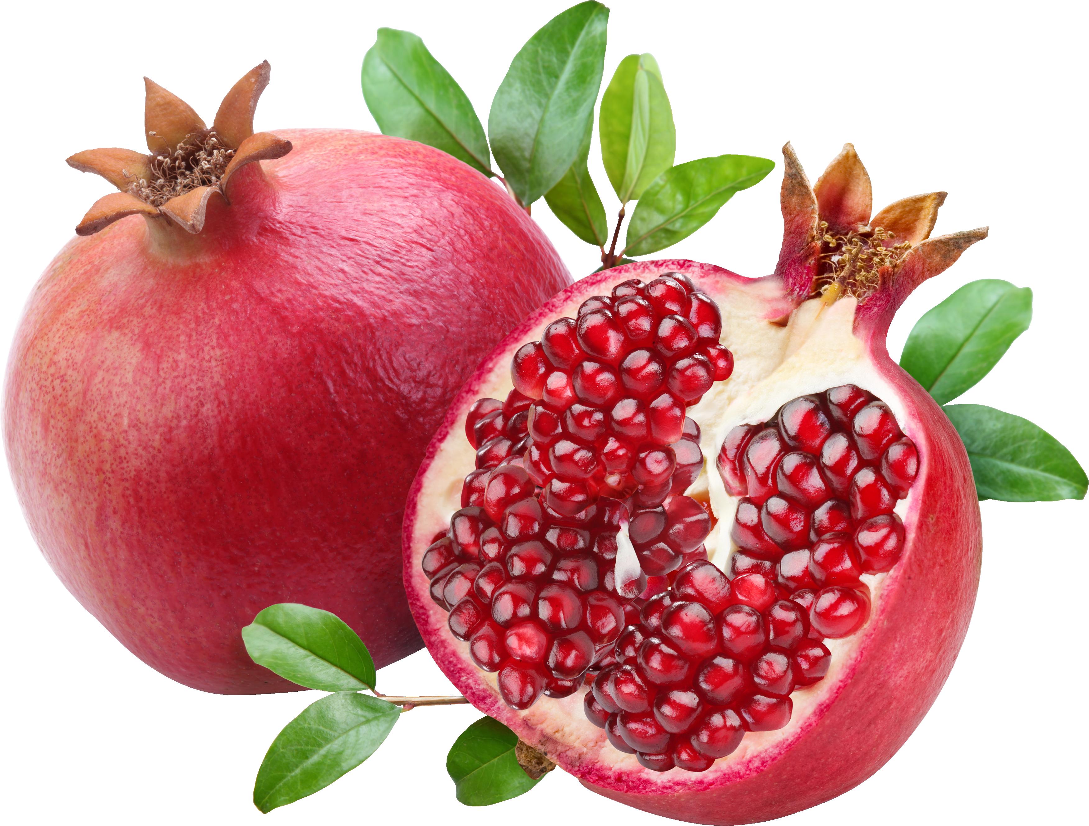 pomegranate clipart high resolution