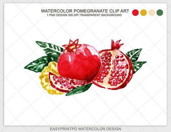 Watercolor clip art instant. Pomegranate clipart illustration