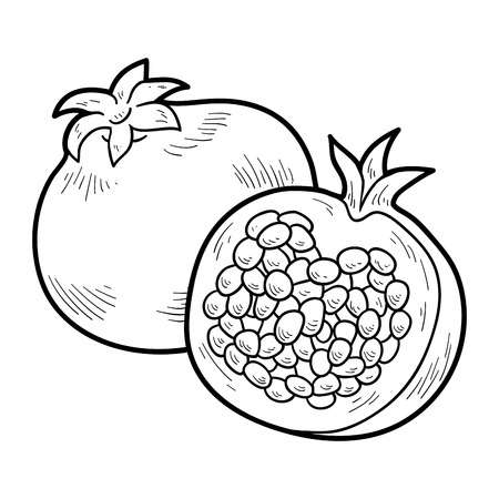 Pomegranate clipart line art. Look at hq clip