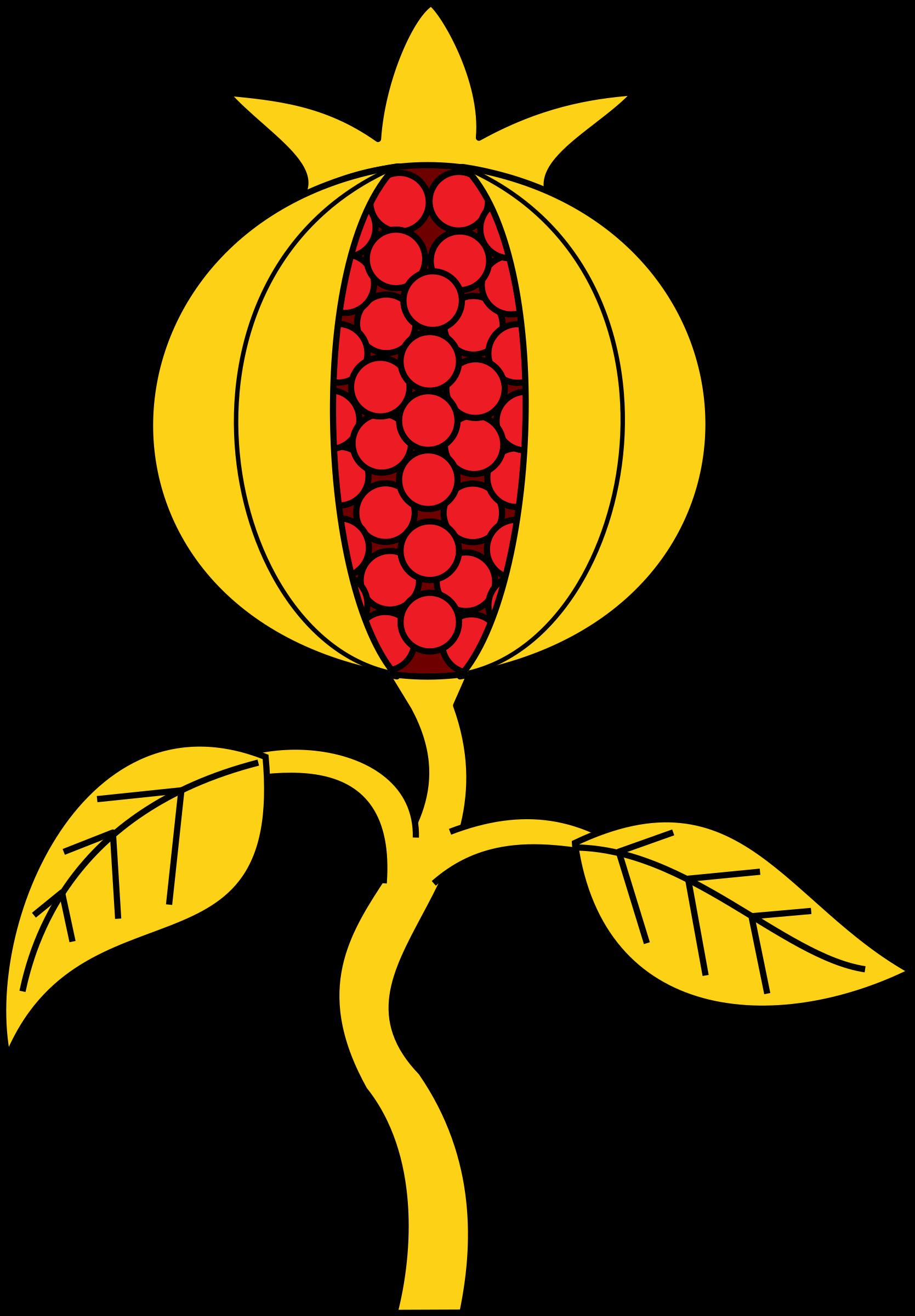 pomegranate clipart line art
