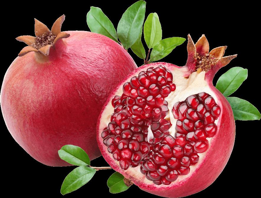 Pomegranate clipart pomegranate seed. Roman png pinterest pomegranates
