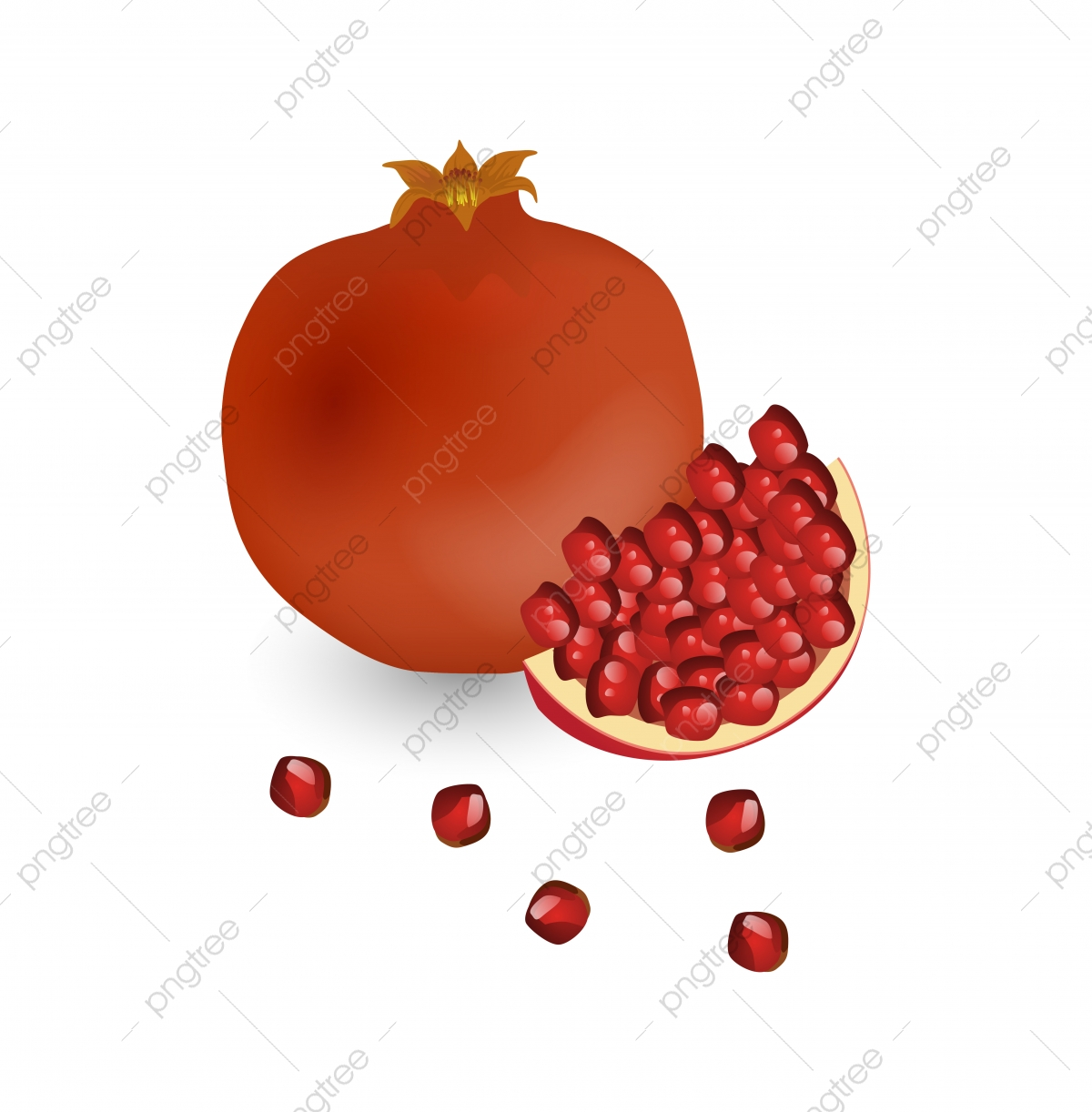 Scattered seeds red . Pomegranate clipart pomegranate seed