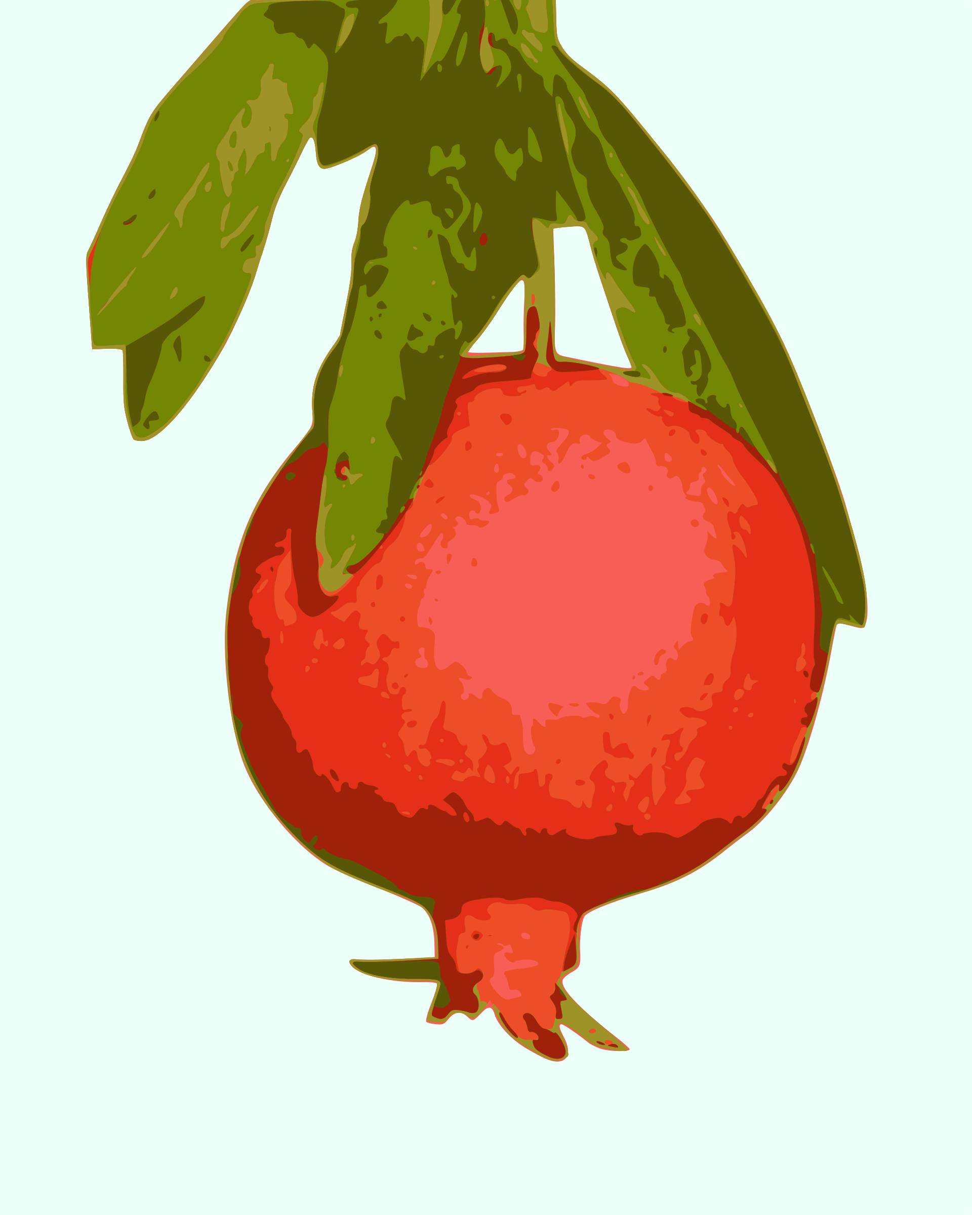 Big image png. Pomegranate clipart pomegranite