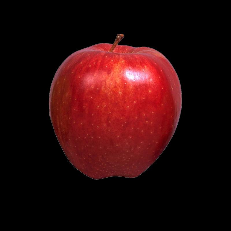 christine staniforth fruits. Pomegranate clipart printable