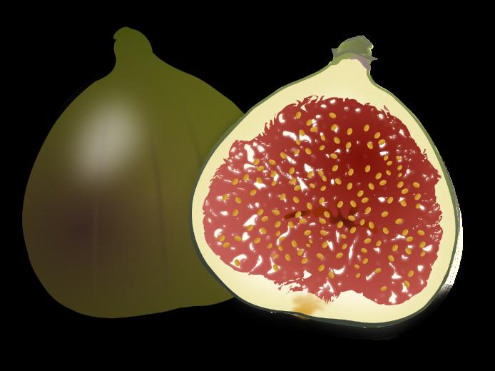 Fruits a printable worksheet. Pomegranate clipart single