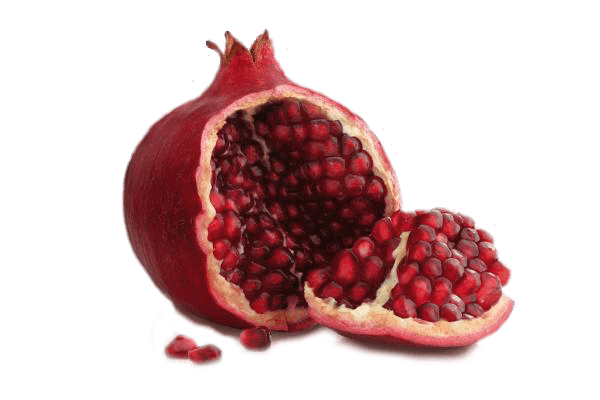 Open transparent png stickpng. Pomegranate clipart single